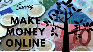 Make Money Online Survey