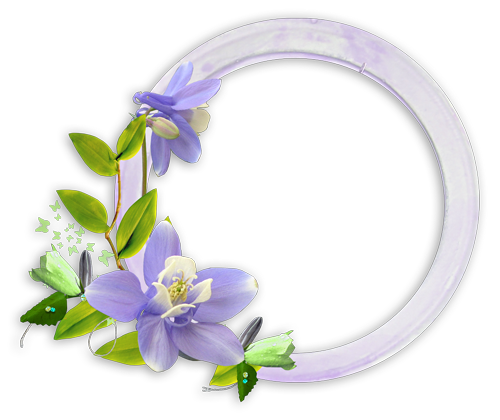 flower_purple_frame-036
