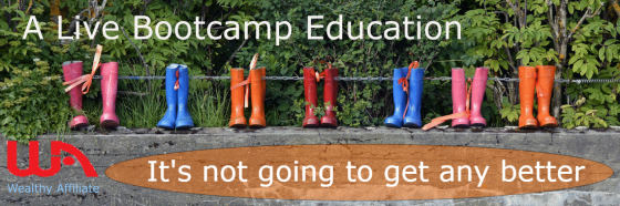 A live bootcamp education