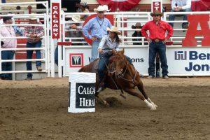 Different marketing Niche-marketing-barrel-race-horse