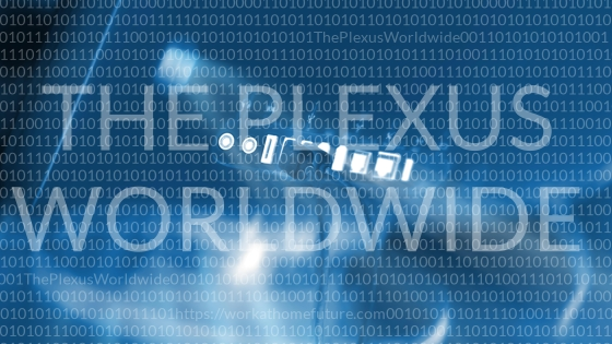 the plexus worldwide internet
