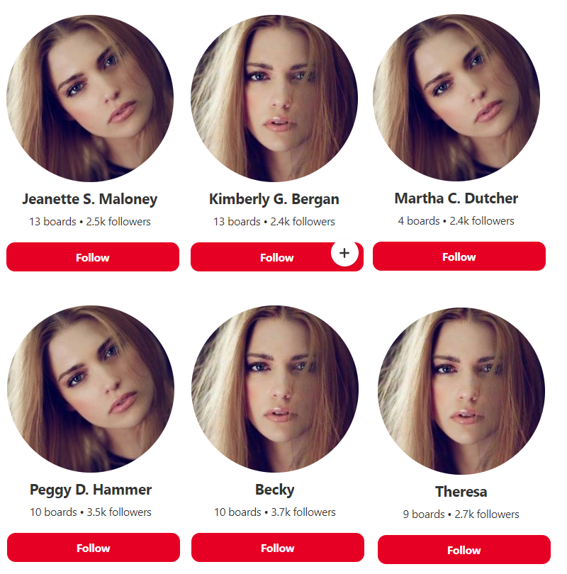 Pinterest 6 fake accounts
