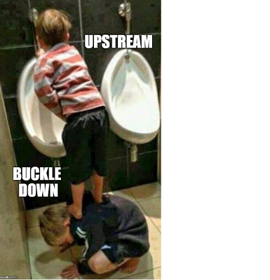 Upstream_buckle_down